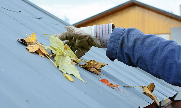 Yero Tips: Protecting Your Roof Against the Typhoon Season